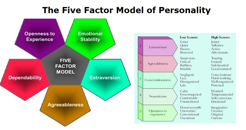 personality factors Study psy250 psychology of personality from university of phoenix describe biological factors that influence personality formation identify the effect of growth needs on personality formation psychoanalytic and trait theories.